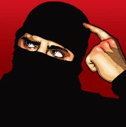 Ask a Ninja photo